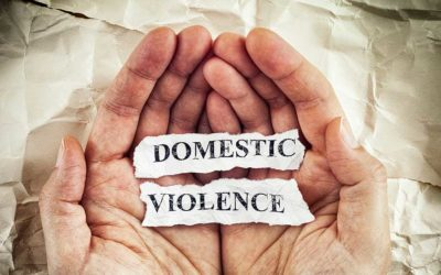 Domestic Violence in SC: 1st, 2nd, 3rd Degree, DVHAN